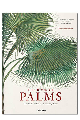 Taschen / Martius - Le livre des Palmiers