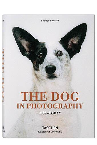 Taschen /  Le chien dans la phototographie 1839 à aujourd'hui